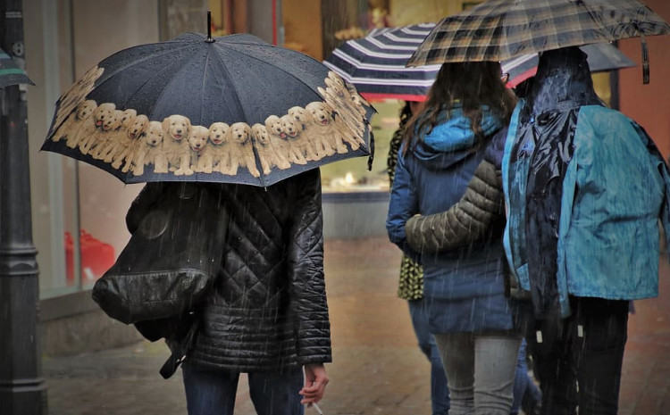 the-next-days-are-rainy,-but-with-temperatures-up-to-12-degrees