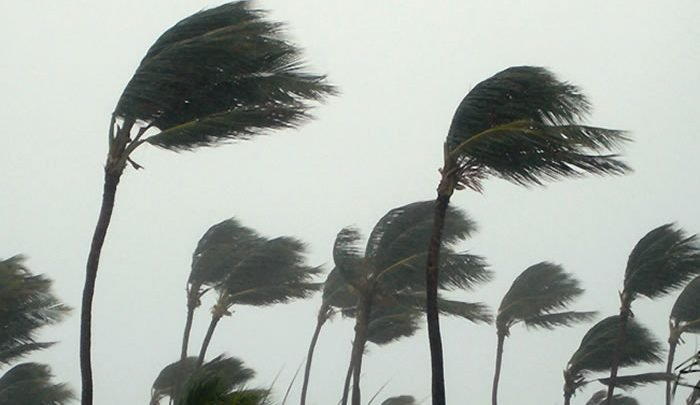 strong-winds-blow-over-11-states