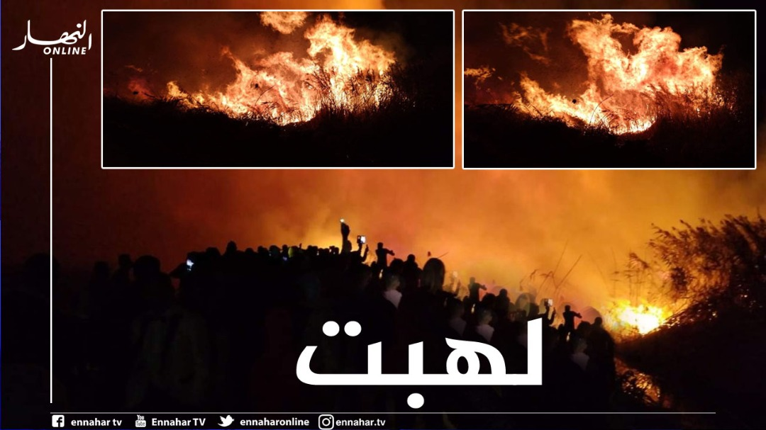 valley:-a-terrible-fire-in-the-sides-of-lake-atita,-the-municipality-of-sidi-amran