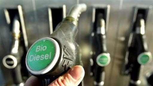 gobierno-estima-invertir-$us-270-millones-para-la-construccion-de-la-planta-de-biodiesel