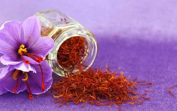 world's-best-saffron-betrayed-by-profiteers