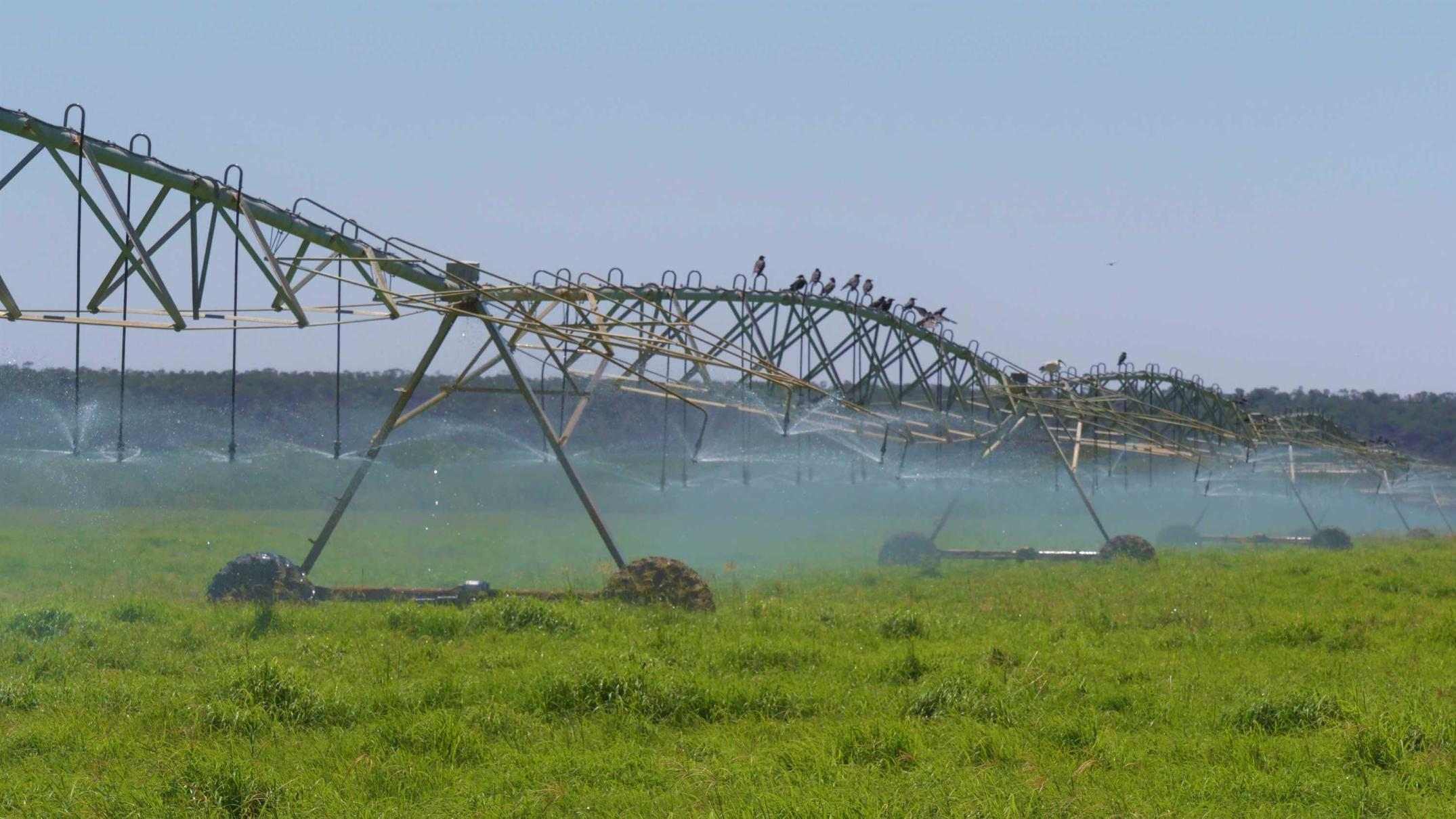 water-the-key-as-outback-queensland-town-strives-for-reversal-of-fortune