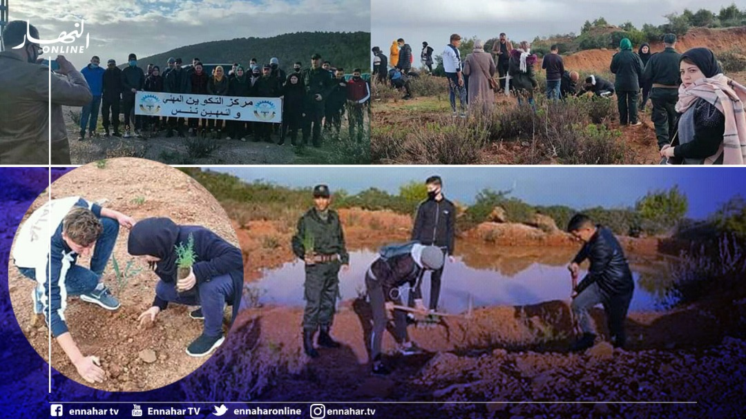 chlef:-trainees-of-the-vocational-training-center-participate-in-an-afforestation-campaign-in-tennis