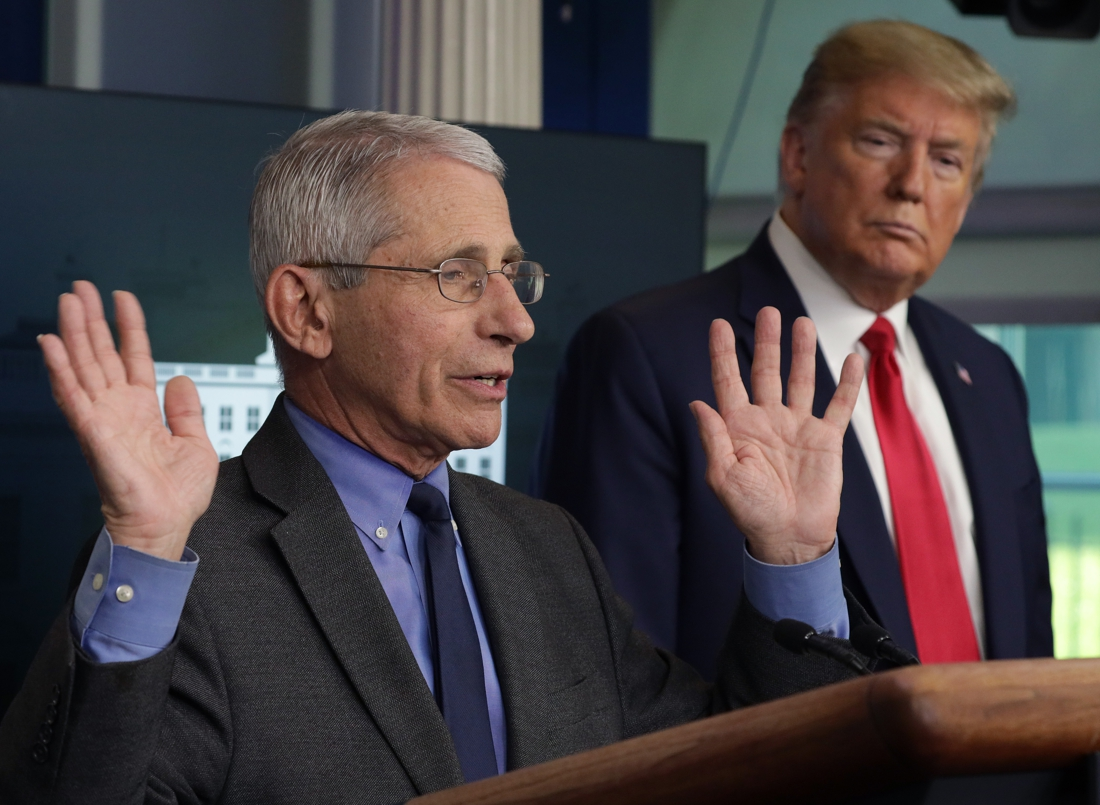 """anthony-fauci,-the-immunologist-who-argued-against-trump's-corona-policy-for-a-year:-""""i-was-the-skunk-at-the-picnic"""""""