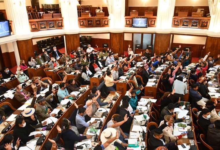 diputados-aprueban-credito-de-hasta-$us-350-millones-de-la-caf-para-la-lucha-contra-el-covid-19
