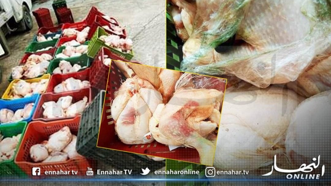 messila:-security-forces-seize-165-kg-of-rotten-chicken