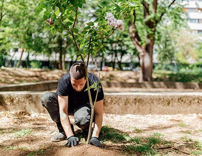 cambio-climatico:-¿como-combatirlo-con-una-ciudad-mas-verde?