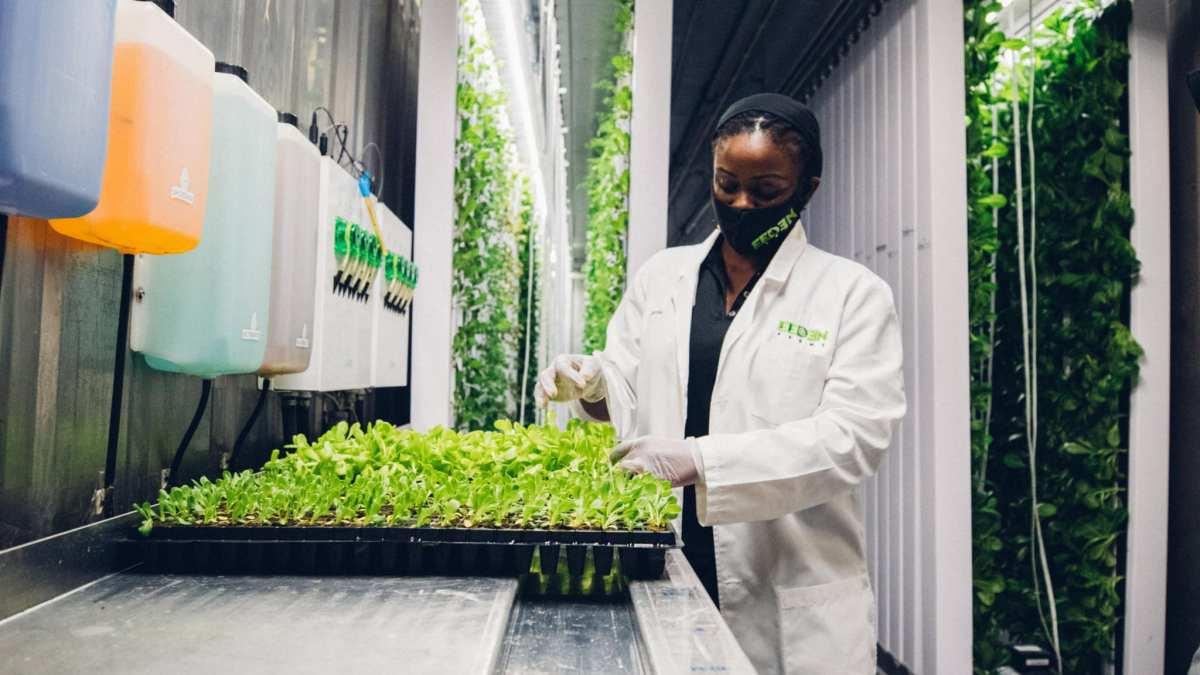 eeden-farms-sees-phenomenal-market-response-to-pioneering-concept