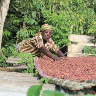 ghana-set-for-biggest-crop-harvest-in-a-decade
