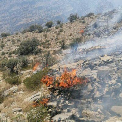 حريق-في-الحمراء-والجهود-متواصلة-لاحتوائه