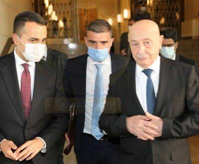 عقيلة-صالح-يدعو-لإجراء-الانتخابات-بموعدها-وإخراج-المرتزقة