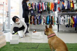 urbes-'pet-friendly'-exigen-mas-compromiso-al-dueno
