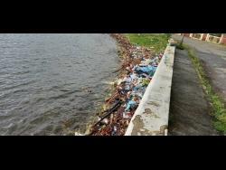 illegal-dumping-smears-portland-park
