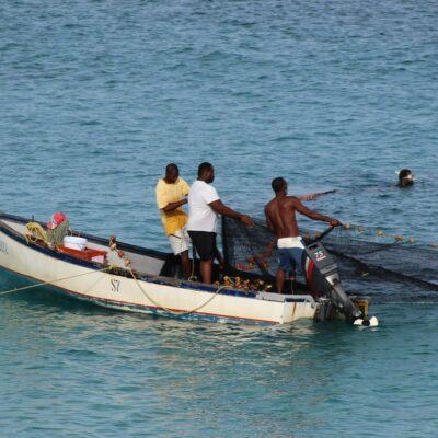 #btcolumn-–-major-talks-about-fisheries-subsidies