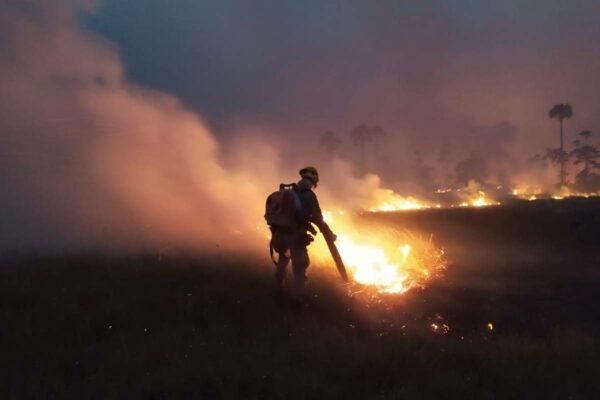 quatro-estados-e-o-df-registram-incendios-acima-da-media-em-setembro