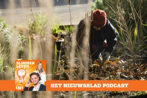 podcast.-your-garden-needs-you-now:-our-expert-gives-tips-so-that-it-will-look-beautifully-green-next-summer